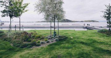 Grøntarealer og grønne tak blir stadig et viktigere satsningsområde på boligprosjekter. – Glasopor er en lett og stabil masse, og ypperlig over garasjeanlegg, sier anleggsgartner.